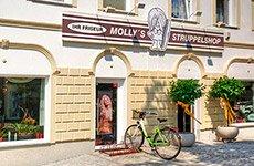 Mollys Struppelshop Ihr Friseur In Falkensee Seit 1993